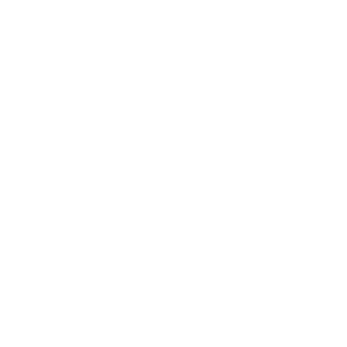 self-storage-leads-icon-247
