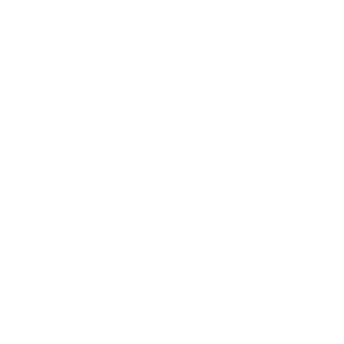 self-storage-leads-icon-cctv